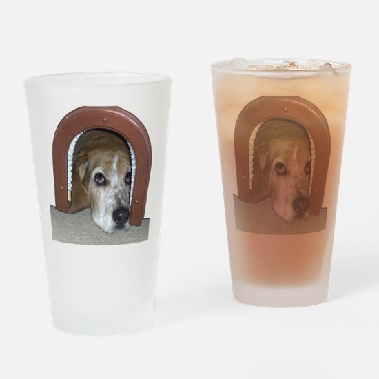 Bassett Hound in Cat Door Drinking Glass