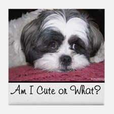 Cute Shih Tzu Dog Tile Coaster