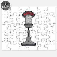 Radio Microphone Puzzle