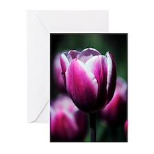 Purple Beauty Greeting Cards