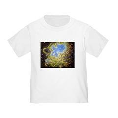 Toaster Passes Nebula T