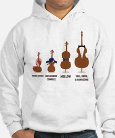 Funny Orchestra String Instruments Hoodie