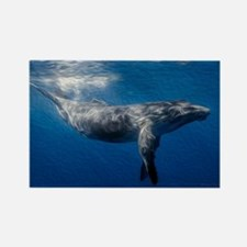 Humpback Whale Under Ocean Surfac Rectangle Magnet