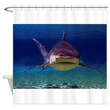 Shark Encounter Shower Curtain