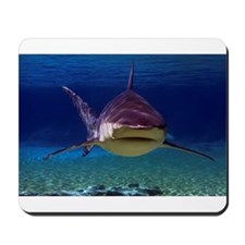 Shark Encounter Mousepad