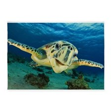 Sea Turtle Soar 5'x7'Area Rug