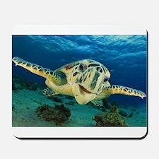 Sea Turtle Soar Mousepad