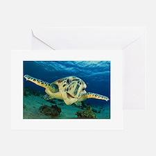 Sea Turtle Soar Greeting Card