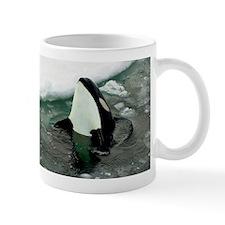 Spy Hopping Orca Whale Mug