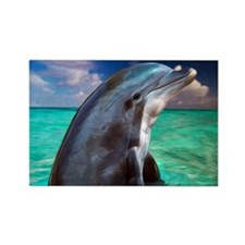 Dolphin Profile Rectangle Magnet