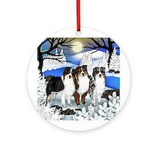 AUSTRALIAN SHEPHERD DOGS RIVER Ornament (Round)