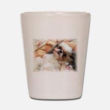 BonnyTheShihTzu_Snuggles Shot Glass