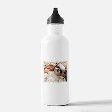 BonnyTheShihTzu_Snuggles Water Bottle
