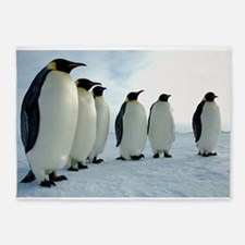 Emperor Penguins Council 5'x7'Area Rug