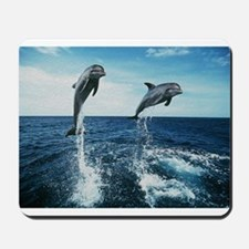 Twin Dolphins Mousepad
