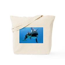 Orca Whale and Calf Tote Bag