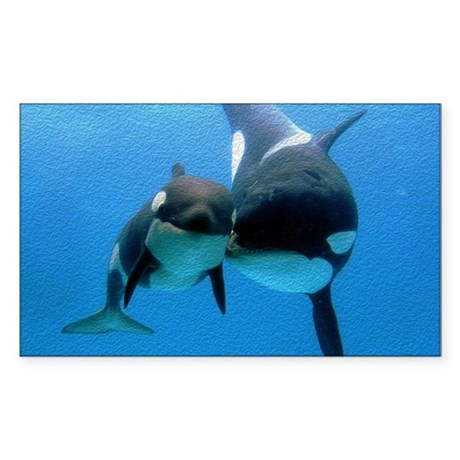 Orca Whale and Calf Sticker (Rectangle)