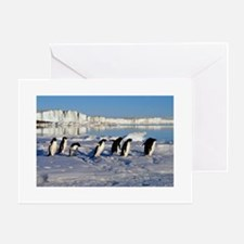 Penguin Place Greeting Card