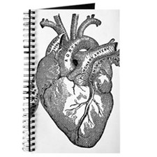 Anatomical Heart - Black Journal