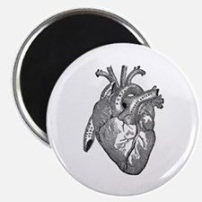 Anatomical Heart - Black Magnets