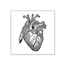 Anatomical Heart - Black Sticker
