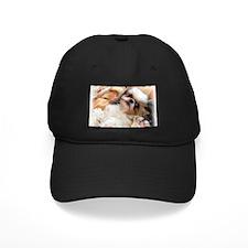 BonnyTheShihTzu_Snuggles Baseball Hat