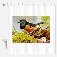 """RUFOUS-SIDED TOWHEE"" Shower Curtain"