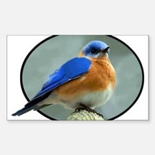 Bluebird in Oval Frame Decal