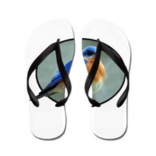 Bluebird in Oval Frame Flip Flops