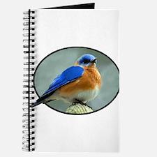 Bluebird in Oval Frame Journal