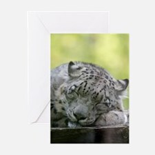 Leopard008 Greeting Cards