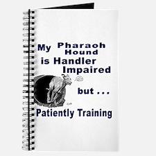 Pharaoh Hound Agility Journal
