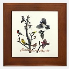 Backyard Birds Framed Tile