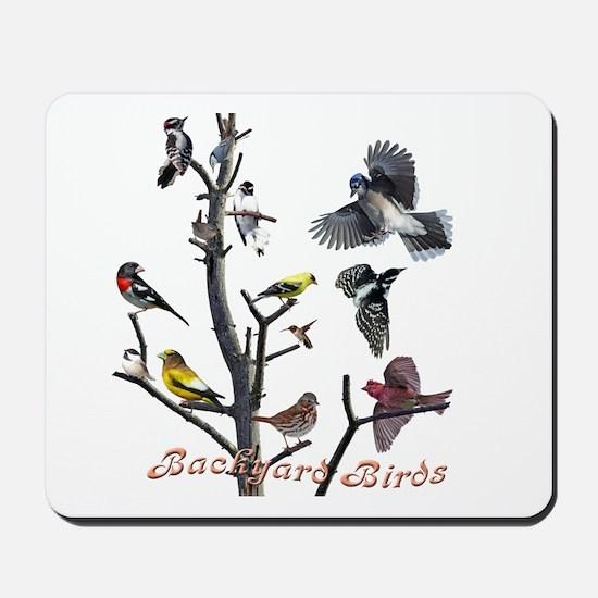 Backyard Birds Mousepad