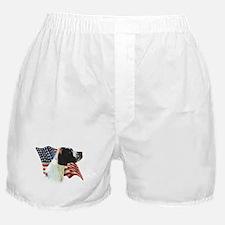 Pointer (Liver) Flag Boxer Shorts