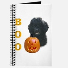 PGW Boo Journal