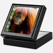 Orangutan Photo Keepsake Box