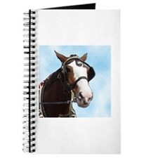 Clydesdale Horse Journal