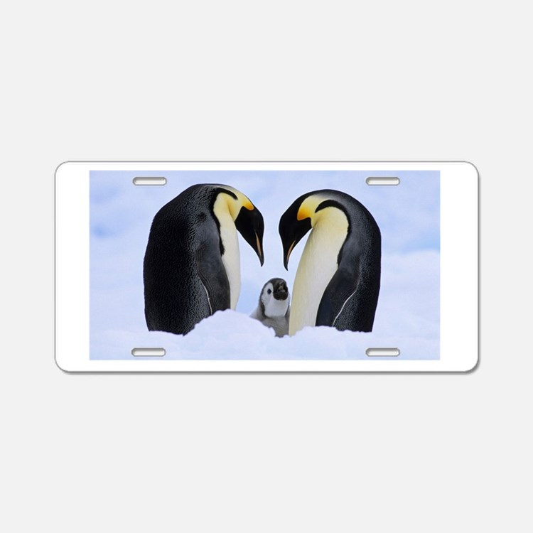 emperor penguins Aluminum License Plate