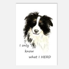 Watercolor Border Collie Postcards (package Of 8)
