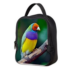 Colorful gouldian finch Neoprene Lunch Bag