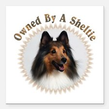 """Owned By A Sheltie 999 Square Car Magnet 3"""" X"""