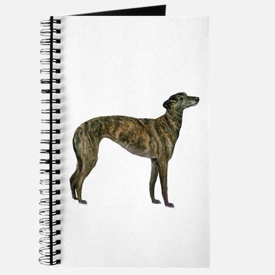 Greyhound (brindle) Journal
