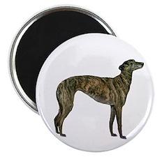 Greyhound (brindle) Magnet Magnets