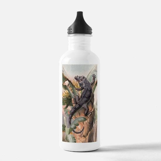 Vintage Reptile, Iguan Water Bottle