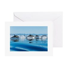 Leaping Dolphin Pod Greeting Card