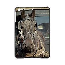 Amish Buggy Horse iPad Mini Case