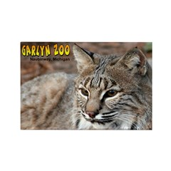 Bobcat Rectangle Magnet (100 pack)