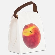 Single Smooth Peach Canvas Lunch Bag