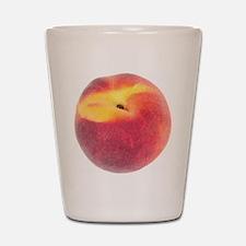 Single Smooth Peach Shot Glass
